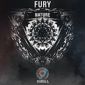 Nature by Fury