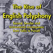 The Rise of English Polyphony by Various Artists