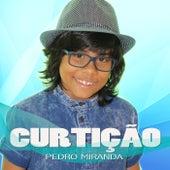 Curtição de Pedro Miranda