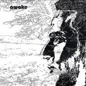 Awake von Uriel Herman
