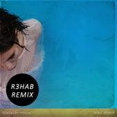Somebody Special (R3hab Remix) von Nina Nesbitt