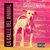 La Calle del Animal by Various Artists