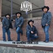 Te Quiero Ver by Grupo Anaya