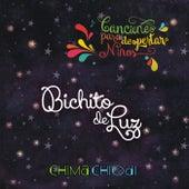 Bichito de Luz de Chima Chiodi