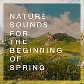 Nature Sounds for the Beginning of Spring de Various Artists