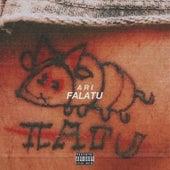 Fala Tu by Ari