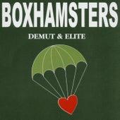Demut & Elite by Boxhamsters