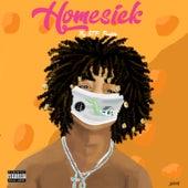 Homesick by Stp.Freddo