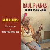 La vida es un sueño by Raul Planas