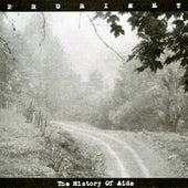 History of Aids von Prurient