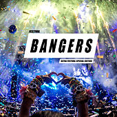 Festival Bangers (Ultra Edition) van Various