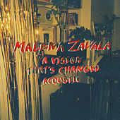 A Vision That's Changed (acoustic) by Malena Zavala