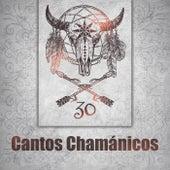 Cantos Chamánicos (30 Música Curativa, Flauta Nativa Americana, Sueños Profundos Chamánicos y Meditación, Viaje de Curación) de Various Artists