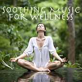 Soothing Music For Wellness by Various Artists