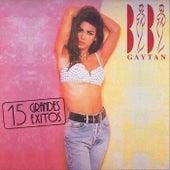 15 Grandes Éxitos de Bibi Gaytan