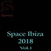 Space Ibiza 2018 Vol.1 van Various