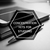Concentration Hits For Studying by Various Artists