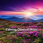 Calming Classical Music: Relaxing and Chilled Classical Pieces von Various Artists