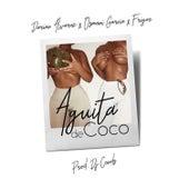 Aguita de Coco de Friger