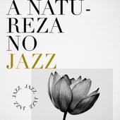 A natureza no Jazz by Various Artists