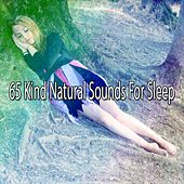 65 Kind Natural Sounds For Sleep by Ocean Sounds Collection (1)