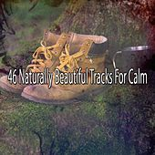 46 Naturally Beautiful Tracks For Calm von Lullabies for Deep Meditation