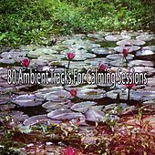 80 Ambient Tracks For Calming Sessions de Meditación Música Ambiente