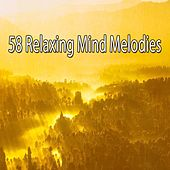 58 Relaxing Mind Melodies de Musica Relajante