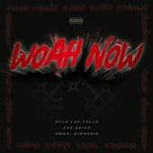 Woah Now (feat. San Quinn & Amuri Dimaggio) by Dela the Fella