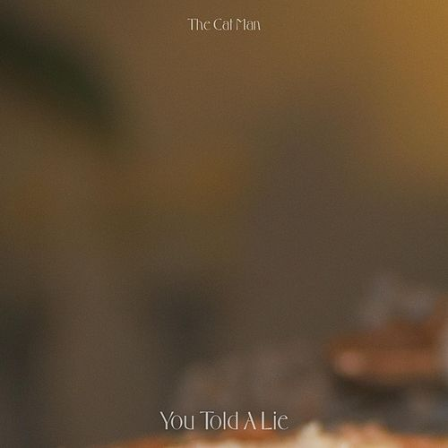 You Told A Lie by Catman