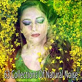63 Collections Of Natural Noise by Ocean Sounds Collection (1)