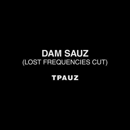 Dam Sauz (Lost Frequencies Cut) von Two Pauz