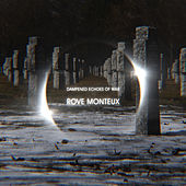 Dampened Echoes of War de Rove Monteux