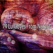 74 Lullabyes From Nature by Lullaby Land