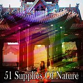 51 Supplies Of Nature von Lullabies for Deep Meditation