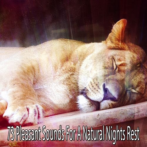73 Pleasant Sounds For A Natural Nights Rest by Baby Sleep Sleep