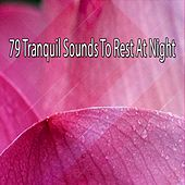79 Tranquil Sounds To Rest At Night by Ocean Sounds Collection (1)