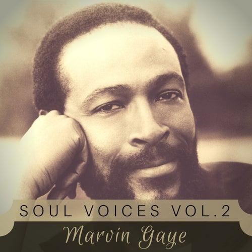 Soul Voices Vol. 2 de Marvin Gaye