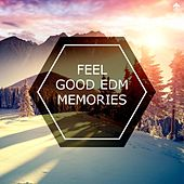 Feel Good EDM Memories by Various Artists
