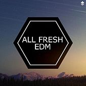 All Fresh EDM by Various Artists