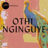 Othi Nginguye by Hillsong Worship