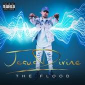 The Flood de Jesus Divine