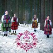 Enjoy The Silence (Folk Version) von Tulia