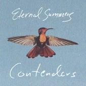 Contenders by Eternal Summers