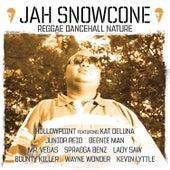 Jah Snowcone - Reggae Dancehall Nature de Various Artists