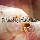 78 Peacefully Ambient Tracks de White Noise Babies