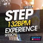 Mega Step 132 BPM Experience Session von Various Artists