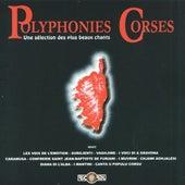 Polyphonies corses, Vol. 4: Une sélection des plus beaux chants de Various Artists