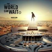 The World Can Wait by Waylon