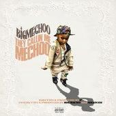 They Callin Me Mechoo by Big Mechoo